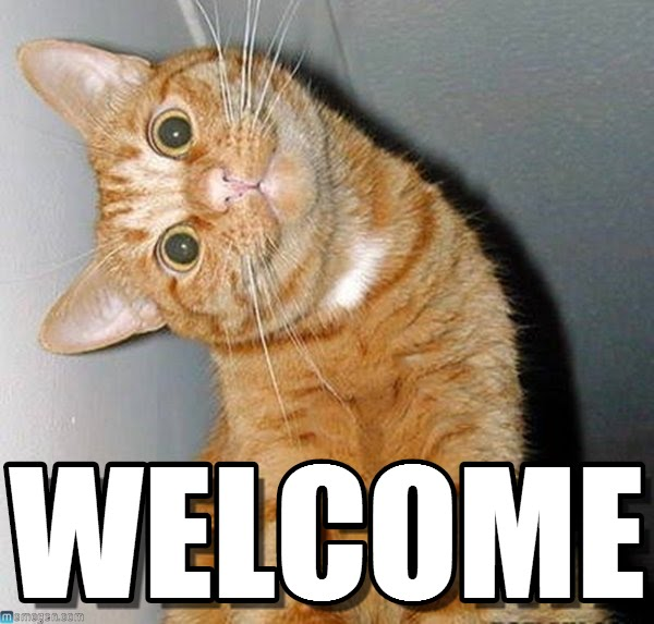 welcome-cat
