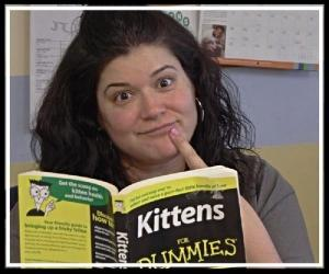 Lisa is reading up on the skills needed to foster kittens.