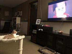 Noodle catches up on his favorite shows and movies in his private theater.