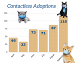 Contactless Adoptions